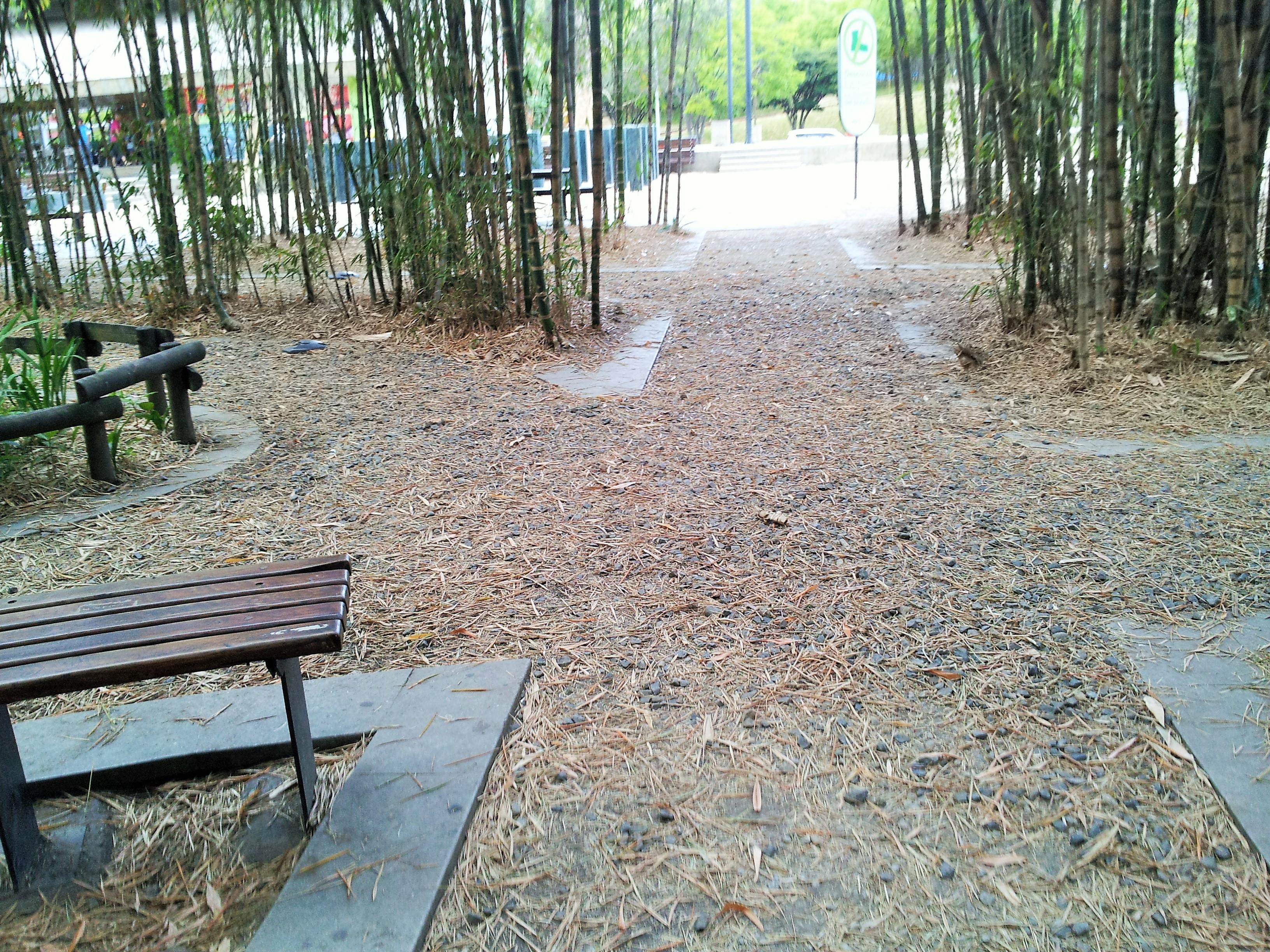 Barefoot Park
