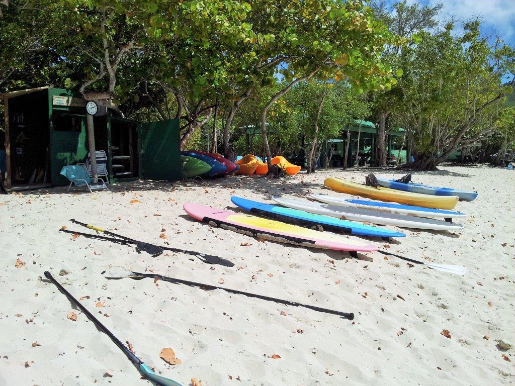 Magen's Bay paddleboard