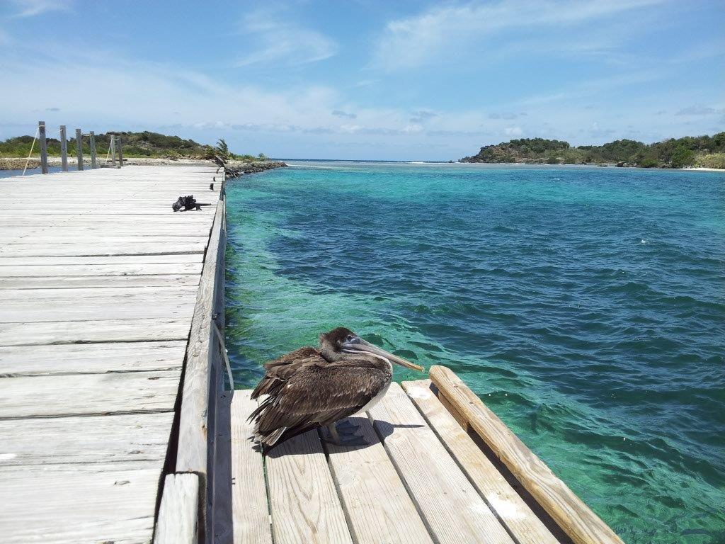 Diamond Cay, Jost Van Dyke