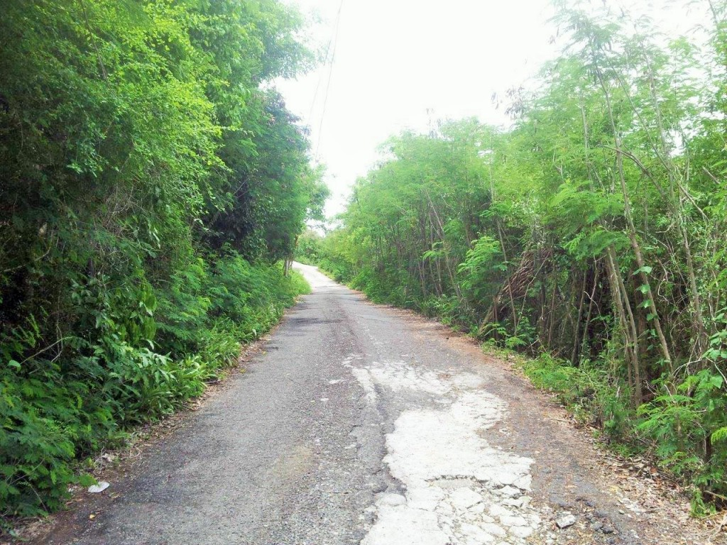 Dominica Rd to Platform Beach