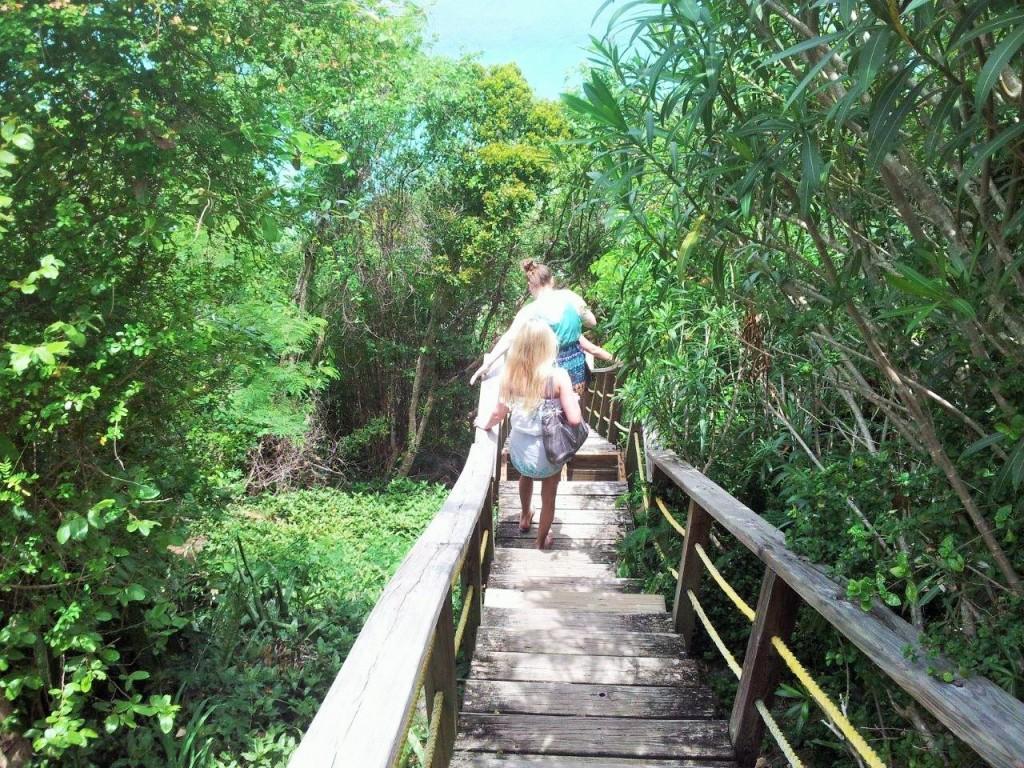 Platform Beach Steps, USVI